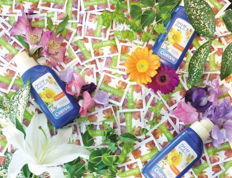切花栄養剤